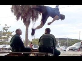 parkour-police