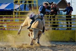 rodeo, foto svajer sára